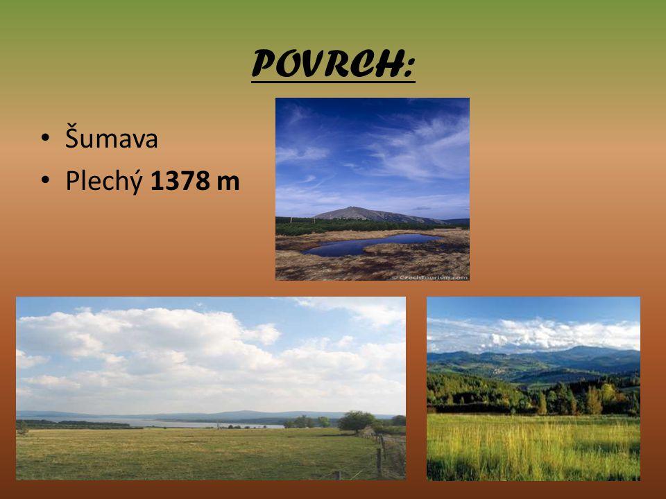 VODSTVO: Šumava je prameništěm několika významných řek např.