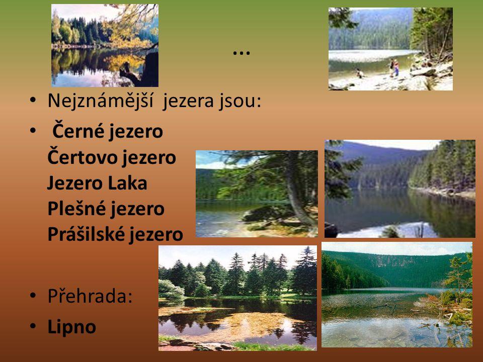 … Nejznámější jezera jsou: Černé jezero Čertovo jezero Jezero Laka Plešné jezero Prášilské jezero Přehrada: Lipno
