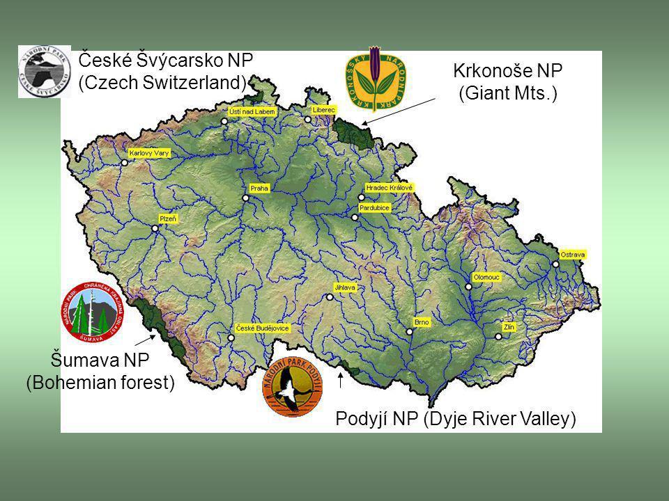 Krkonoše NP (Giant Mts.) Šumava NP (Bohemian forest) Podyjí NP (Dyje River Valley) České Švýcarsko NP (Czech Switzerland)