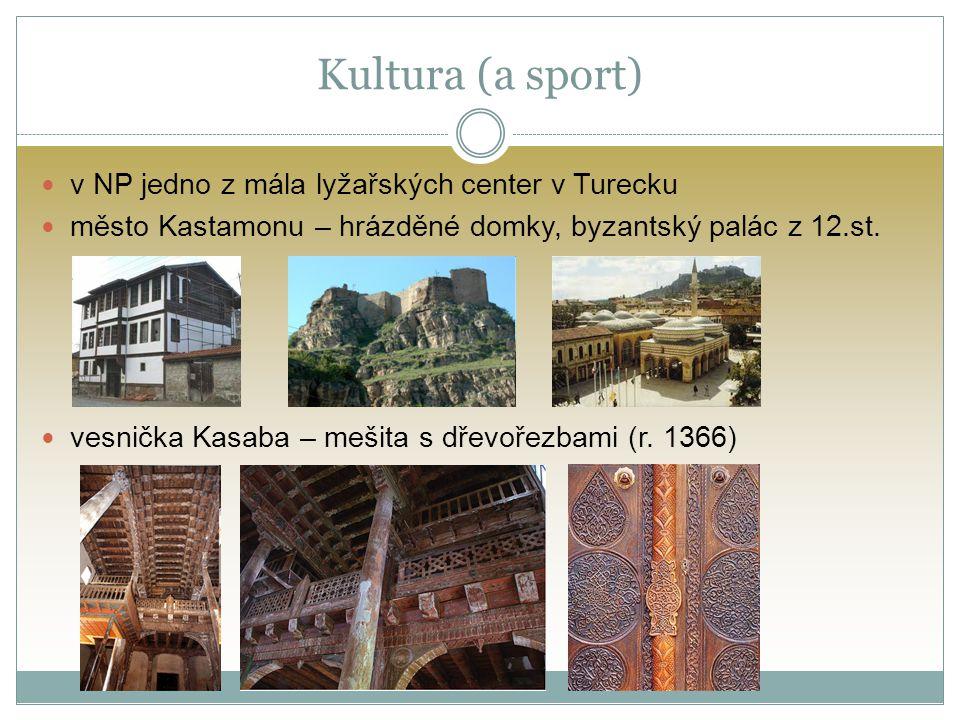 Kultura (a sport) v NP jedno z mála lyžařských center v Turecku město Kastamonu – hrázděné domky, byzantský palác z 12.st.