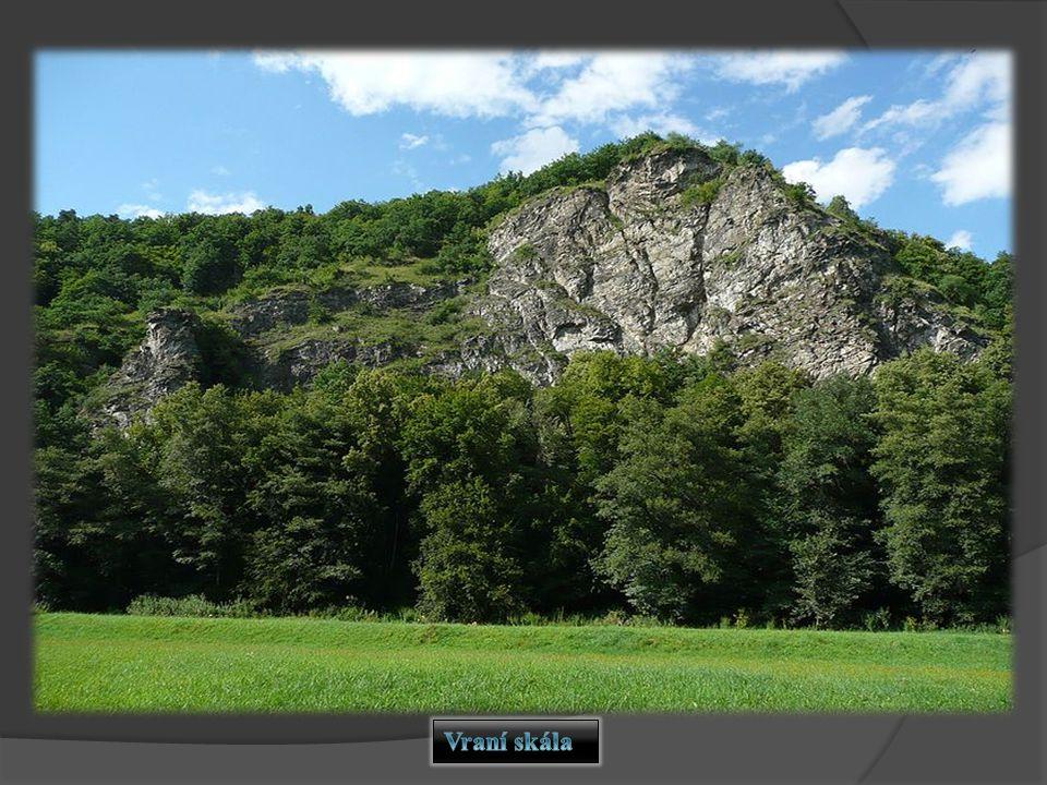 NP Podyjí patří mezi druhově nejbohatší velkoplošná chráněná území ČR.