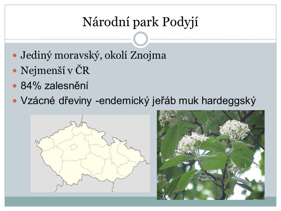 Národní park Podyjí Jediný moravský, okolí Znojma Nejmenší v ČR 84% zalesnění Vzácné dřeviny -endemický jeřáb muk hardeggský