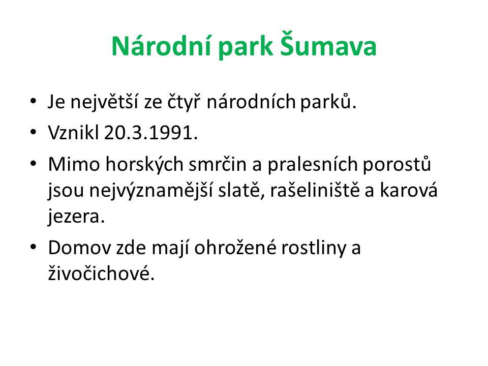 Národní park Šumava Je největší ze čtyř národních parků. Vznikl 20.3.1991. Mimo horských smrčin a pralesních porostů jsou nejvýznamější slatě, rašelin