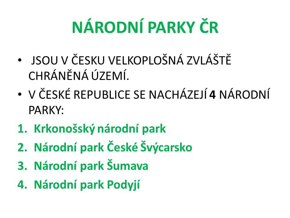 NÁRODNÍ PARKY ČR JSOU V ČESKU VELKOPLOŠNÁ ZVLÁŠTĚ CHRÁNĚNÁ ÚZEMÍ. V ČESKÉ REPUBLICE SE NACHÁZEJÍ 4 NÁRODNÍ PARKY: 1.Krkonošský národní park 2.Národní
