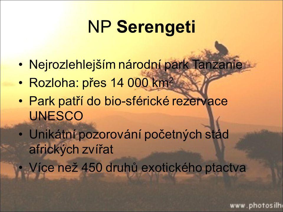 NP Serengeti Nejrozlehlejším národní park Tanzanie Rozloha: přes 14 000 km 2 Park patří do bio-sférické rezervace UNESCO Unikátní pozorování početných