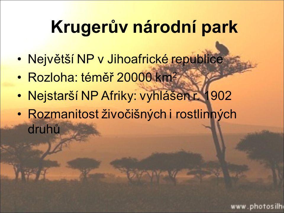 Krugerův národní park Největší NP v Jihoafrické republice Rozloha: téměř 20000 km 2 Nejstarší NP Afriky: vyhlášen r. 1902 Rozmanitost živočišných i ro