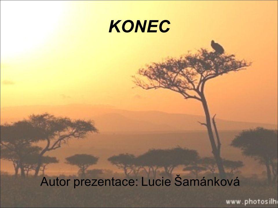 KONEC Autor prezentace: Lucie Šamánková