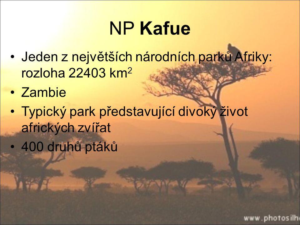 NP Kafue Jeden z největších národních parků Afriky: rozloha 22403 km 2 Zambie Typický park představující divoký život afrických zvířat 400 druhů ptáků