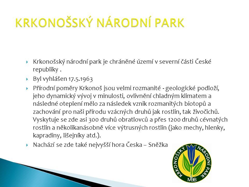 Je lesnaté území v České republice, na kterém je ustanoven zvláštní režim ochrany životního prostředí.