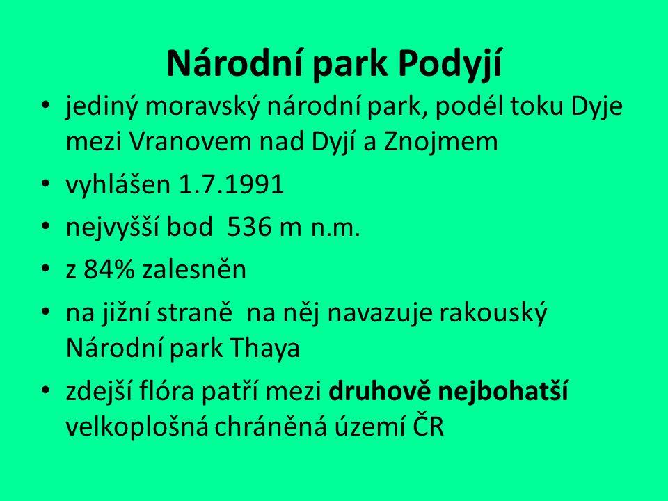 Národní park Podyjí jediný moravský národní park, podél toku Dyje mezi Vranovem nad Dyjí a Znojmem vyhlášen 1.7.1991 nejvyšší bod 536 m n.m. z 84% zal