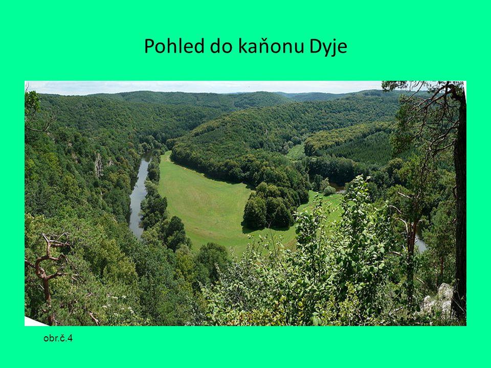 Pohled do kaňonu Dyje obr.č.4