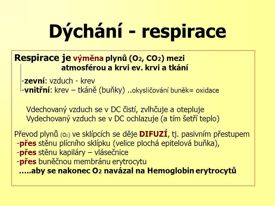 Respirace je výměna plynů (O 2, CO 2 ) mezi atmosférou a krvi ev. krvi a tkání -zevní: vzduch - krev -vnitřní: krev – tkáně (buňky).. okysličování bun