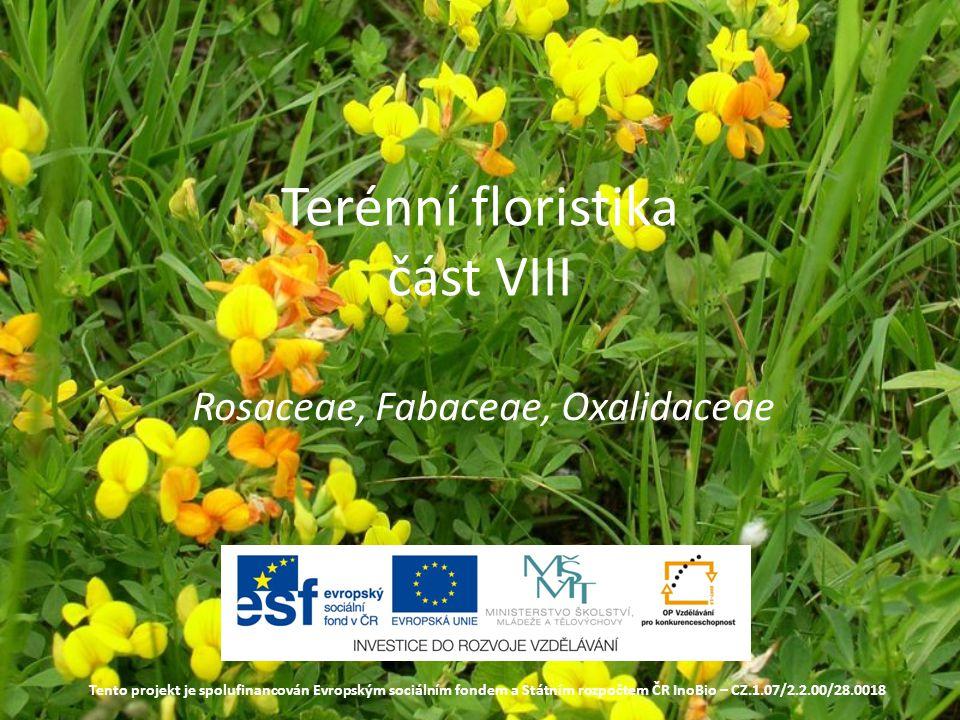 Terénní floristika část VIII Rosaceae, Fabaceae, Oxalidaceae Tento projekt je spolufinancován Evropským sociálním fondem a Státním rozpočtem ČR InoBio – CZ.1.07/2.2.00/28.0018