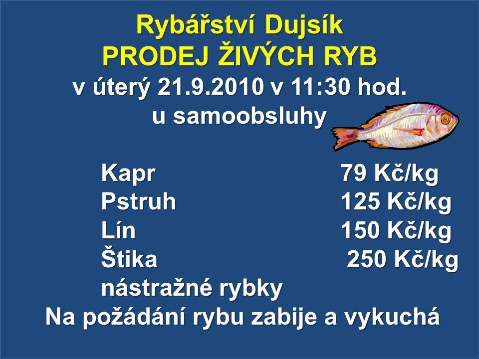 Rybářství Dujsík PRODEJ ŽIVÝCH RYB v úterý 21.9.2010 v 11:30 hod. u samoobsluhy Kapr 79 Kč/kg Pstruh 125 Kč/kg Lín 150 Kč/kg Štika 250 Kč/kg nástražné