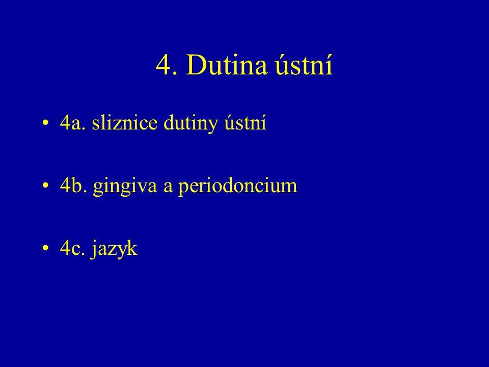 4a. sliznice dutiny ústní 4b. gingiva a periodoncium 4c. jazyk