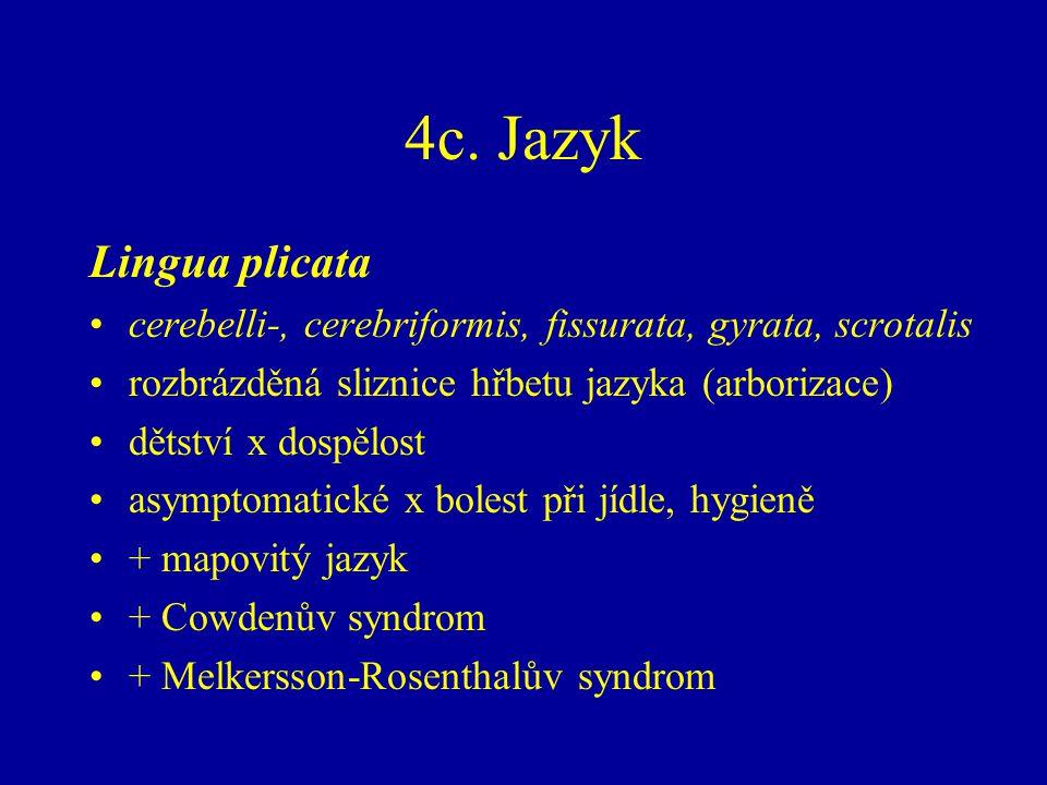 4c. Jazyk Lingua plicata cerebelli-, cerebriformis, fissurata, gyrata, scrotalis rozbrázděná sliznice hřbetu jazyka (arborizace) dětství x dospělost a