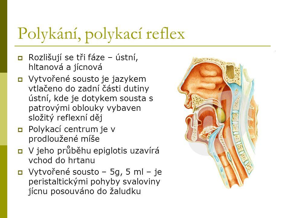 Polykání, polykací reflex  Rozlišují se tři fáze – ústní, hltanová a jícnová  Vytvořené sousto je jazykem vtlačeno do zadní části dutiny ústní, kde