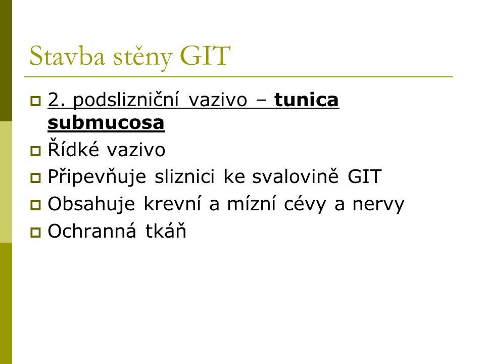 Stavba stěny GIT  2. podslizniční vazivo – tunica submucosa  Řídké vazivo  Připevňuje sliznici ke svalovině GIT  Obsahuje krevní a mízní cévy a ne
