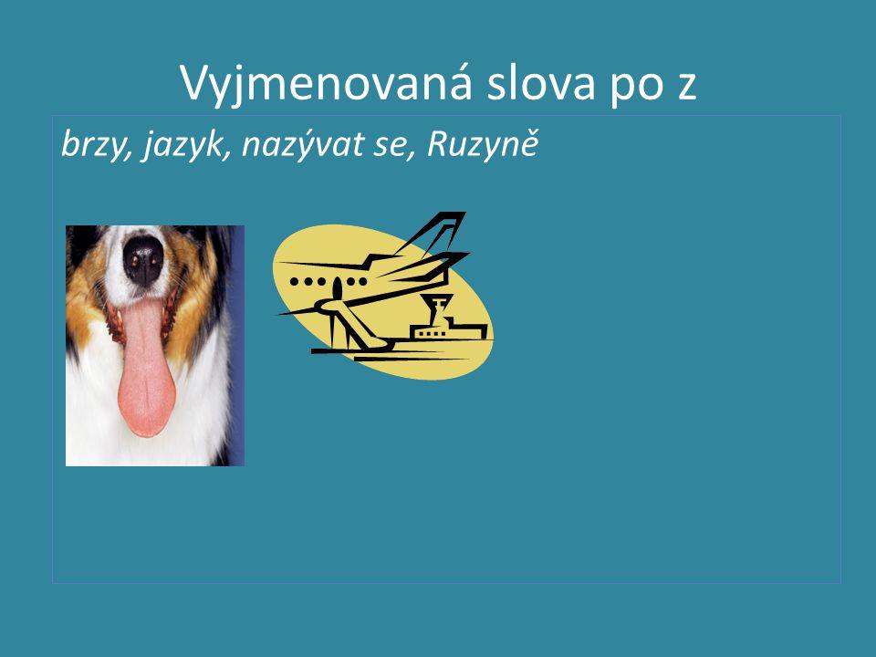 Vyjmenovaná slova po z brzy, jazyk, nazývat se, Ruzyně