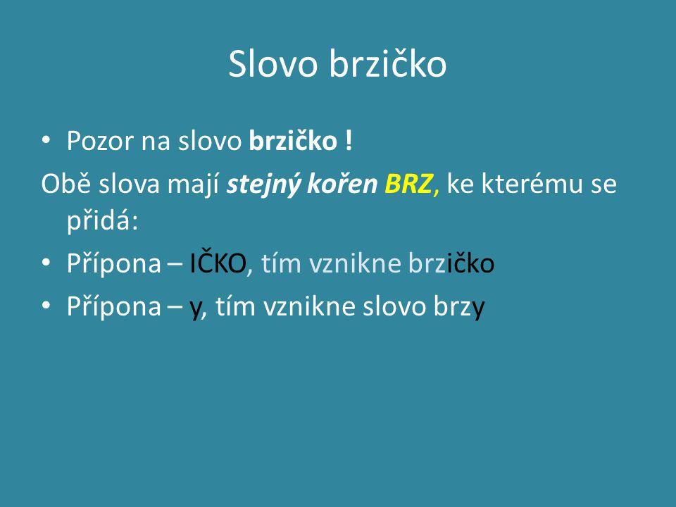Slovo brzičko Pozor na slovo brzičko .