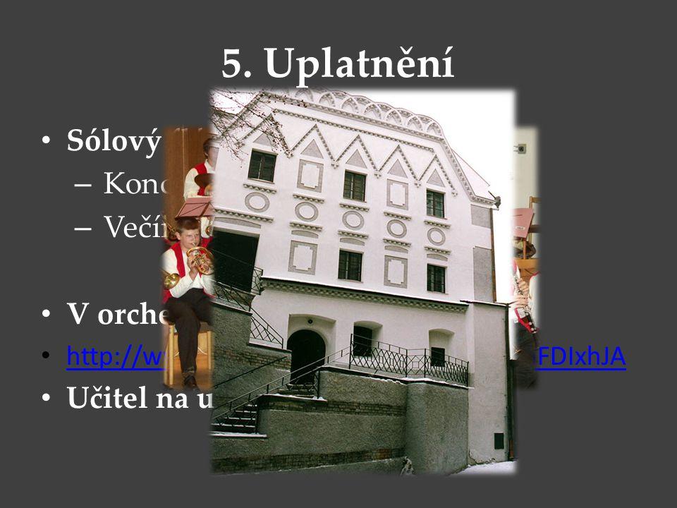 5. Uplatnění Sólový flétnista – Koncerty – Večírky V orchestru http://www.youtube.com/watch?v=0CEnFDIxhJA Učitel na uměleckých školách