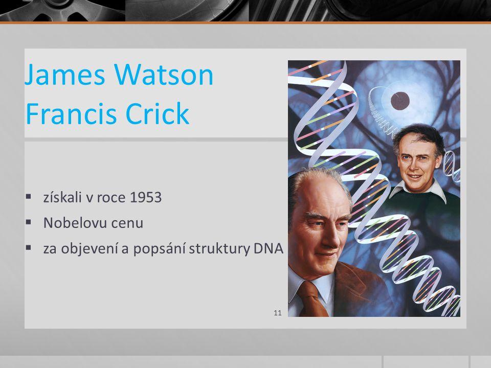 James Watson Francis Crick  získali v roce 1953  Nobelovu cenu  za objevení a popsání struktury DNA 11