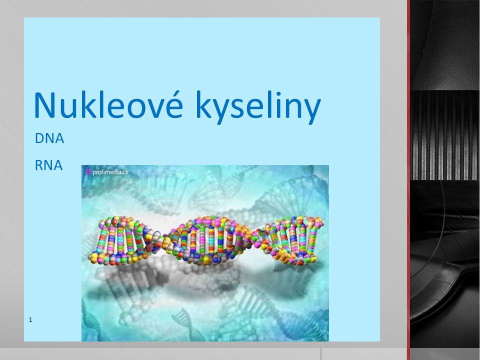 Nukleové kyseliny DNA RNA 1