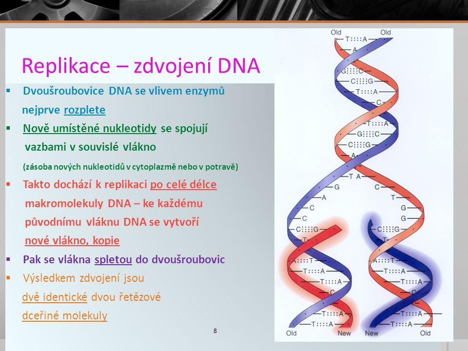 Replikace – zdvojení DNA  Dvoušroubovice DNA se vlivem enzymů nejprve rozplete  Nově umístěné nukleotidy se spojují vazbami v souvislé vlákno (zásoba nových nukleotidů v cytoplazmě nebo v potravě)  Takto dochází k replikaci po celé délce makromolekuly DNA – ke každému původnímu vláknu DNA se vytvoří nové vlákno, kopie  Pak se vlákna spletou do dvoušroubovic  Výsledkem zdvojení jsou dvě identické dvou řetězové dceřiné molekuly 8