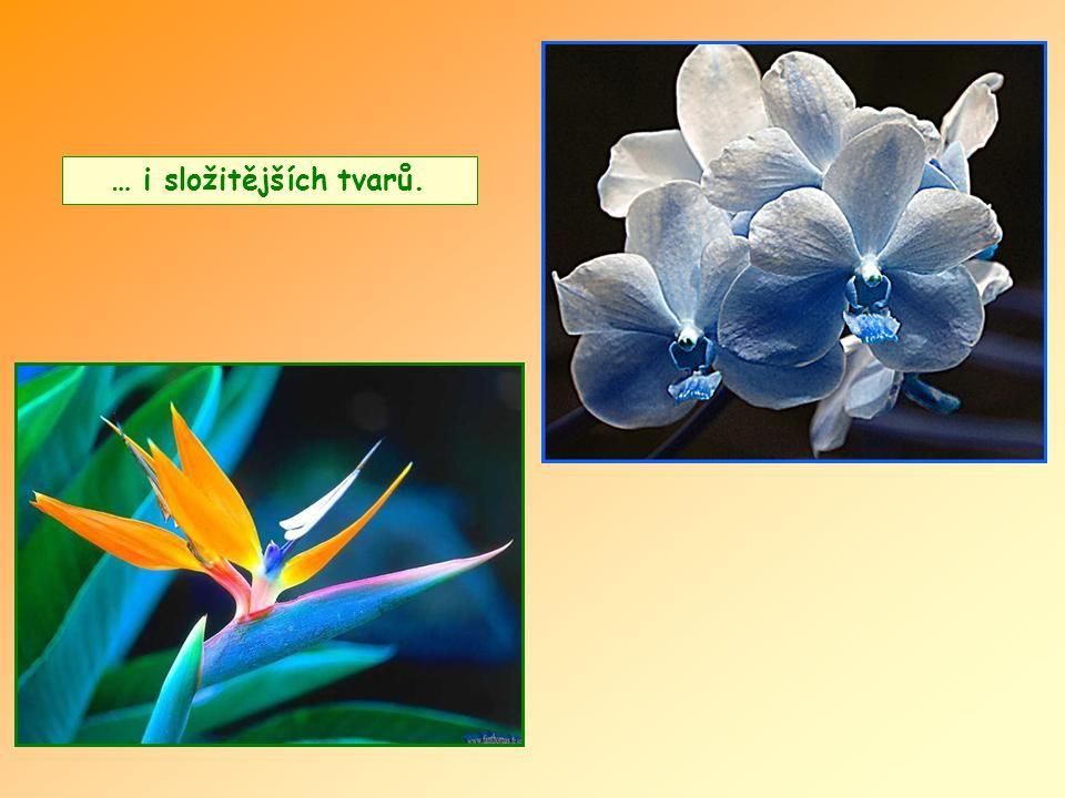 Květiny velmi jednoduché…