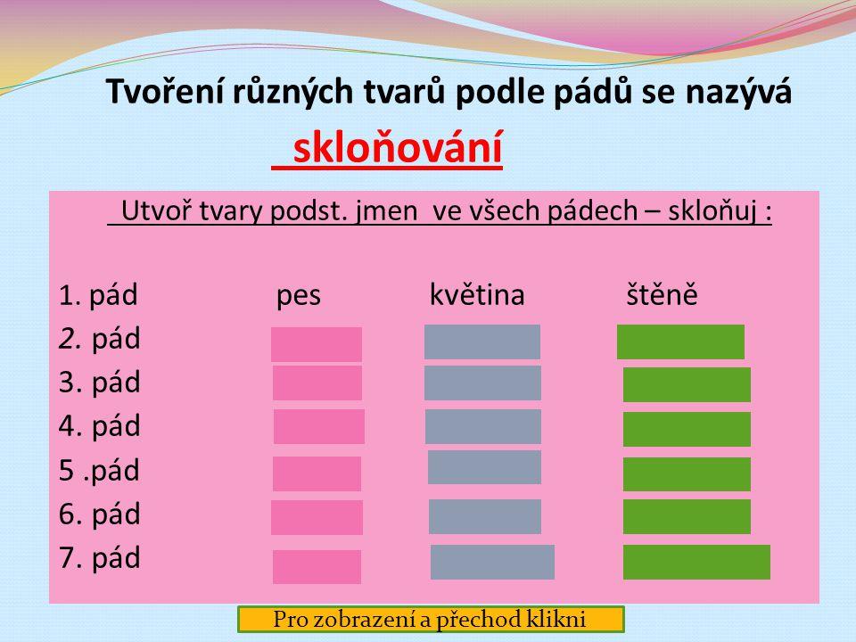 Český jazyk – Tvarosloví Skloňování podstatných jmen - úvod