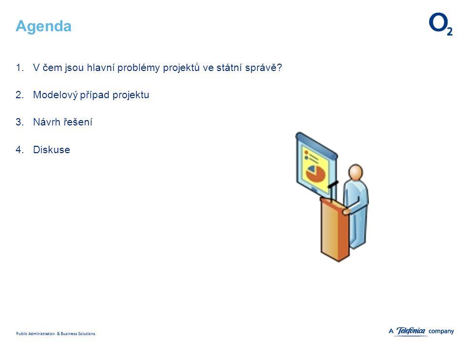 Public Administration & Business Solutions Agenda 1.V čem jsou hlavní problémy projektů ve státní správě.