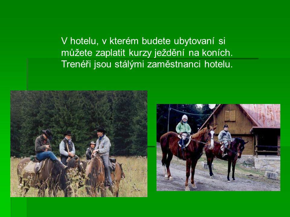 Ubytování V hotelu Cingov