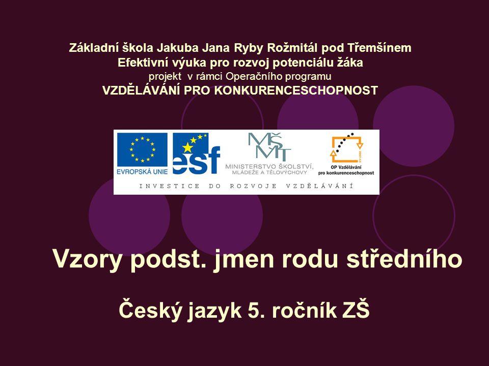Vzory podst.jmen rodu středního Český jazyk 5.