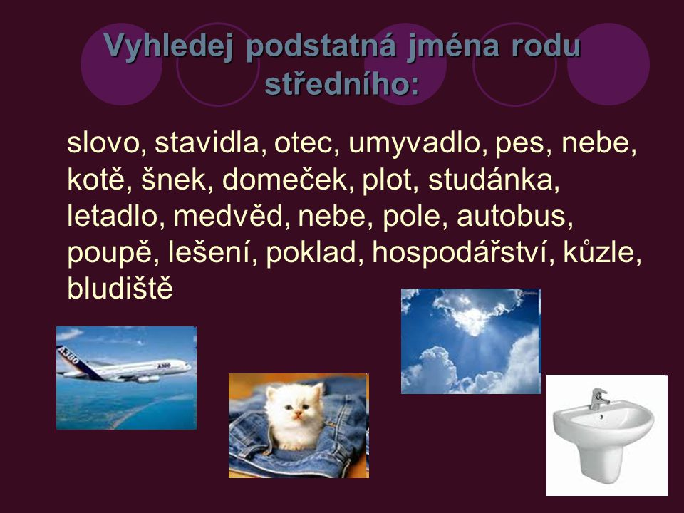 Vyhledej podstatná jména rodu středního: - Řešení slovo, stavidla, otec, umyvadlo, pes, nebe, kotě, šnek, domeček, plot, studánka, letadlo, medvěd, nebe, pole, autobus, poupě, lešení, poklad, hospodářství, kůzle, bludiště