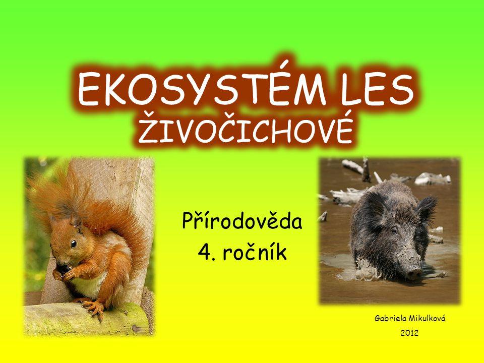 LIŠKA OBECNÁ Obživa – drobní savci, ptáci, zdechliny Nepřátelé – člověk Velikost – 30 - 40 cm Váha – 4 – 10 kg Rozmnožování – rodí živá mláďata (4 - 6) Přezimování – aktivní i v zimě Savec Zajímavost – je hlavním přenašečem vztekliny!!!!!!!!