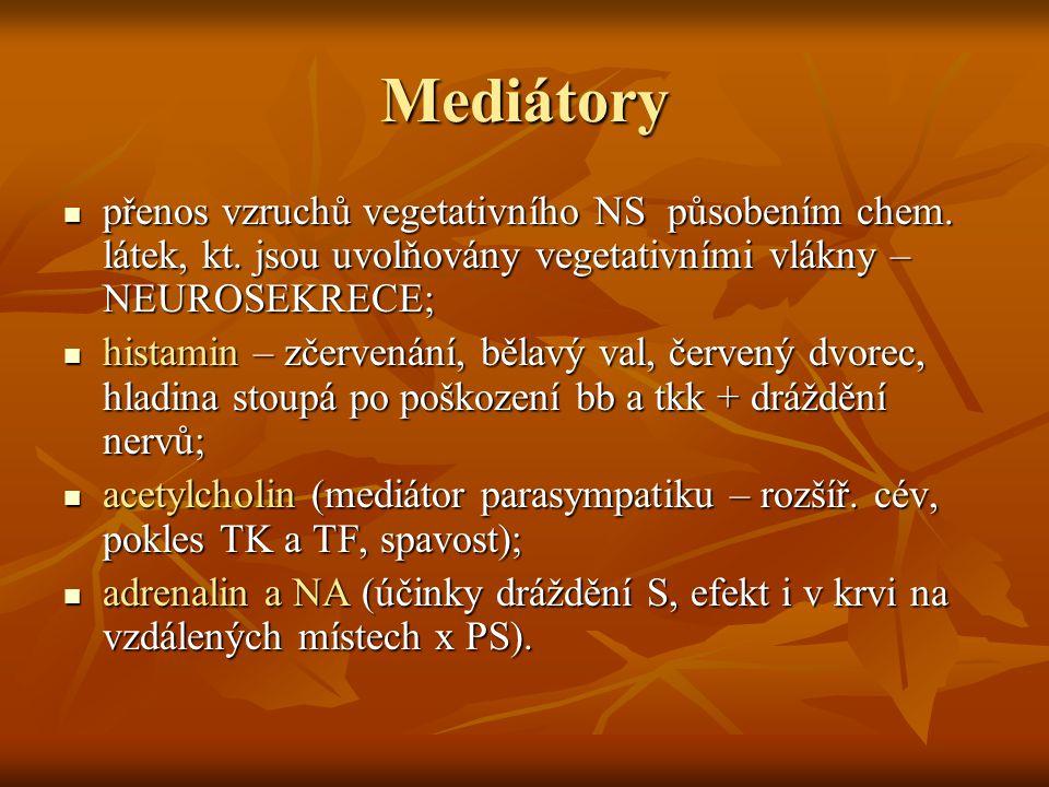 Mediátory přenos vzruchů vegetativního NS působením chem. látek, kt. jsou uvolňovány vegetativními vlákny – NEUROSEKRECE; přenos vzruchů vegetativního