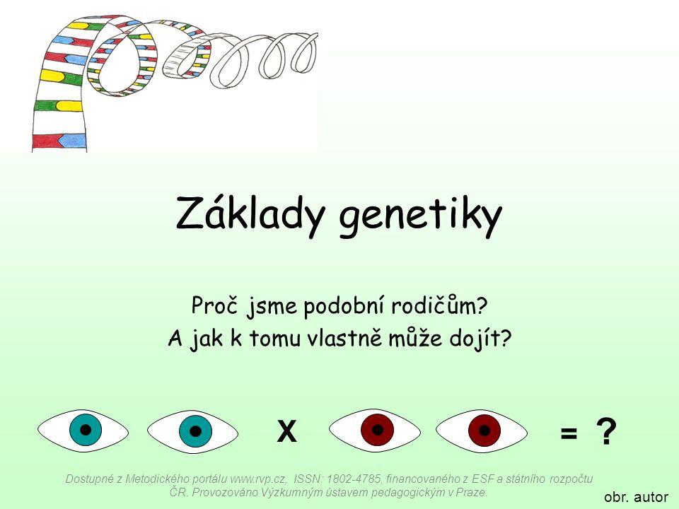 Základy genetiky Proč jsme podobní rodičům? A jak k tomu vlastně může dojít? Dostupné z Metodického portálu www.rvp.cz, ISSN: 1802-4785, financovaného