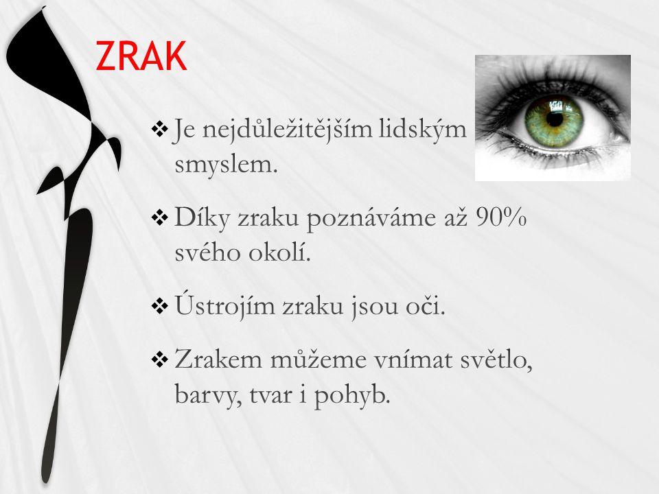http://oko.seebyseeing.net/