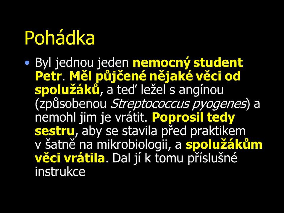 Pohádka Byl jednou jeden nemocný student Petr. Měl půjčené nějaké věci od spolužáků, a teď ležel s angínou (způsobenou Streptococcus pyogenes) a nemoh