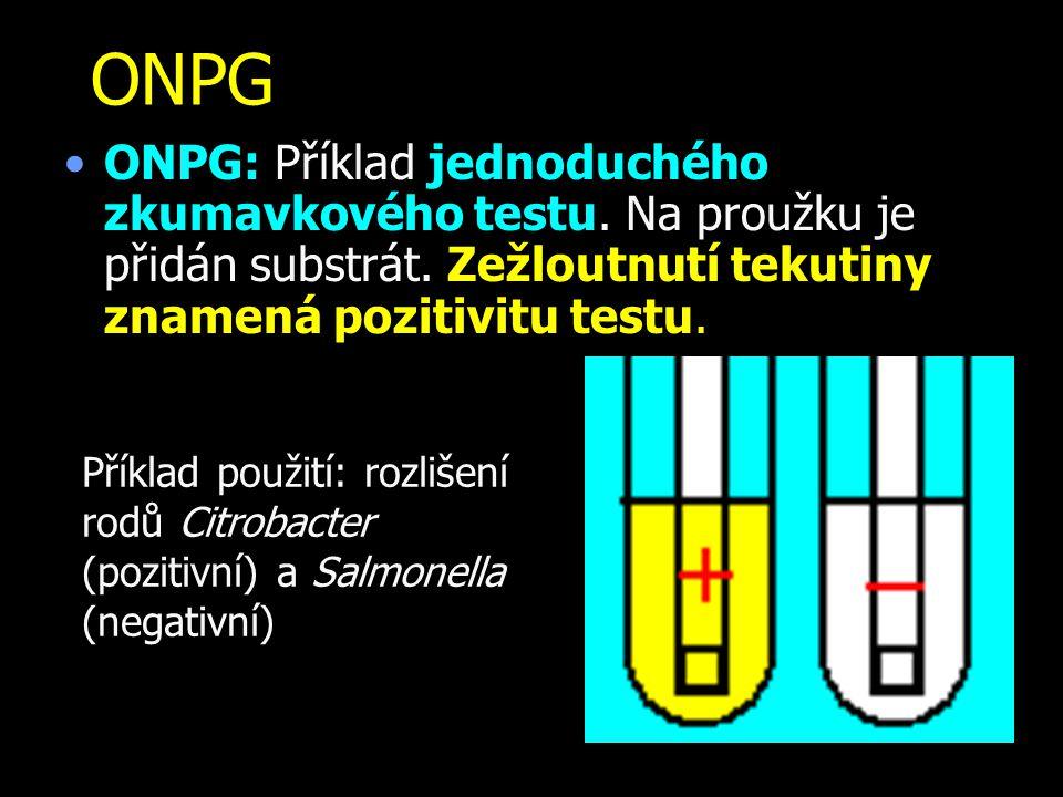 ONPG ONPG: Příklad jednoduchého zkumavkového testu. Na proužku je přidán substrát. Zežloutnutí tekutiny znamená pozitivitu testu. Příklad použití: roz