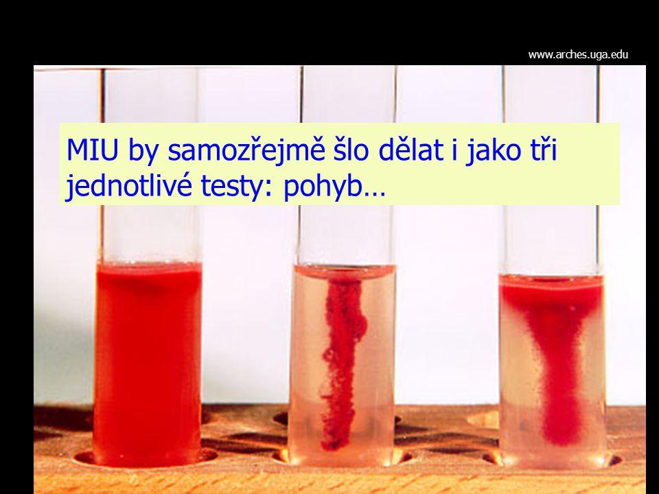 MIU by samozřejmě šlo dělat i jako tři jednotlivé testy: pohyb… www.arches.uga.edu