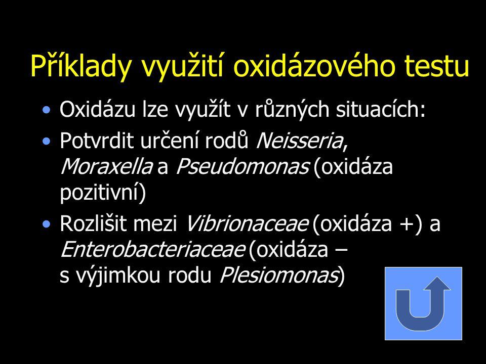 Příklady využití oxidázového testu Oxidázu lze využít v různých situacích: Potvrdit určení rodů Neisseria, Moraxella a Pseudomonas (oxidáza pozitivní)