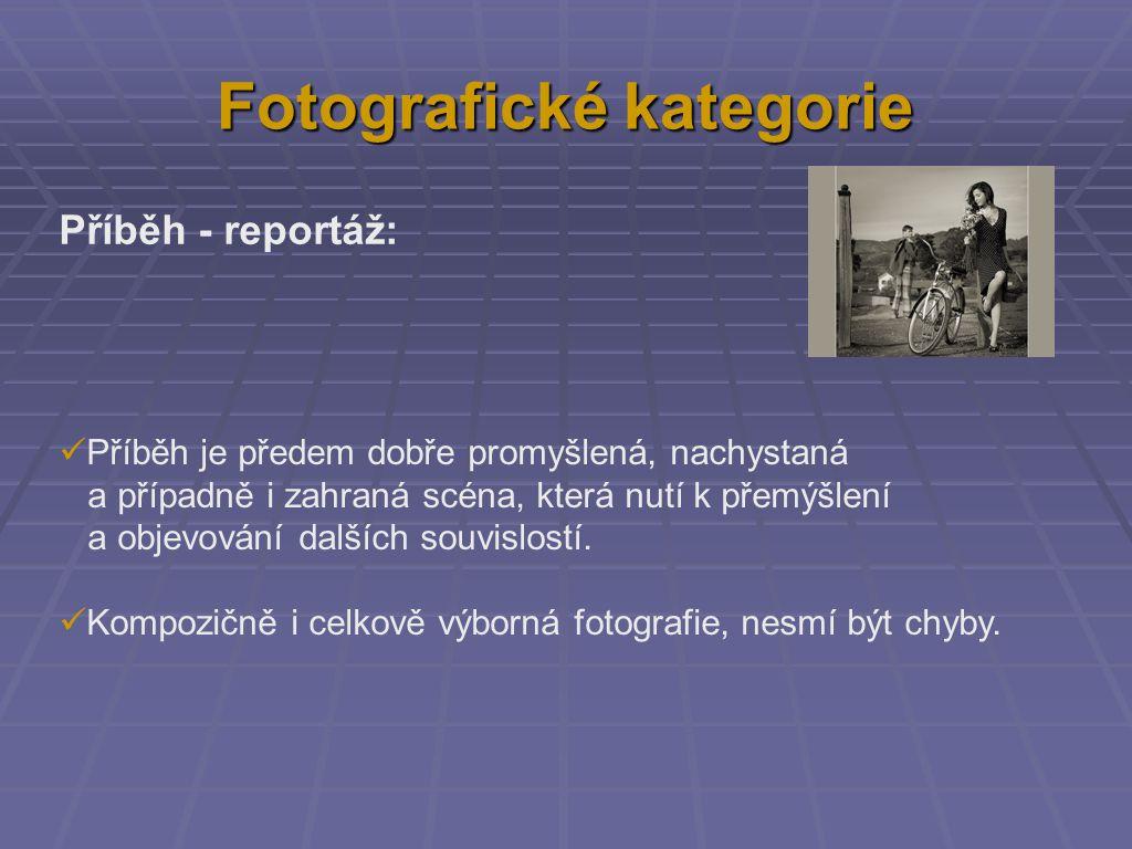 Fotografické kategorie Příběh - reportáž: Příběh je předem dobře promyšlená, nachystaná a případně i zahraná scéna, která nutí k přemýšlení a objevování dalších souvislostí.