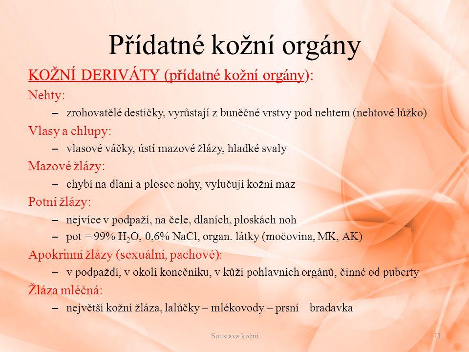Přídatné kožní orgány KOŽNÍ DERIVÁTY (přídatné kožní orgány): Nehty: – zrohovatělé destičky, vyrůstají z buněčné vrstvy pod nehtem (nehtové lůžko) Vla