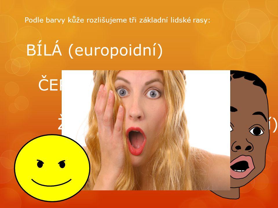 BÍLÁ (europoidní) ČERNÁ (negroidní) ŽLUTOHNĚDÁ (mongoloidní) Podle barvy kůže rozlišujeme tři základní lidské rasy: