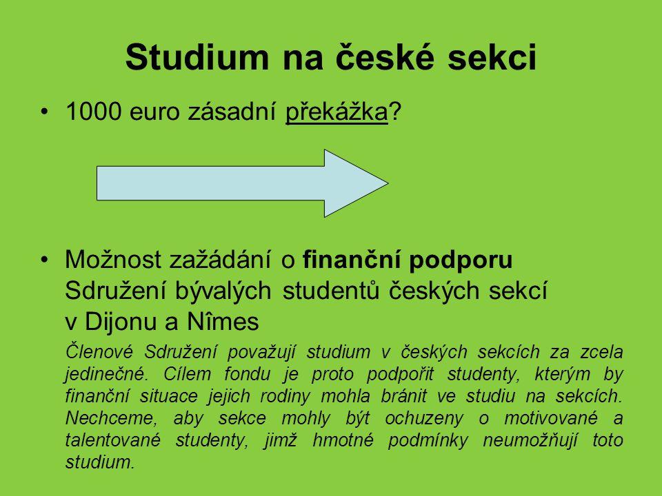 Žádost o podporu Přijatí studenti mohou zažádat o plné (1000 euro) nebo částečné stipendium Motivační dopis (ne)vyhovění žádosti řešeno individuálně Brána v potaz finanční situace rodiny