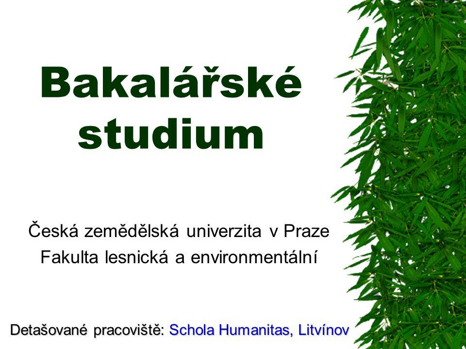 Bakalářské studium Česká zemědělská univerzita v Praze Fakulta lesnická a environmentální Detašované pracoviště: Schola Humanitas, Litvínov