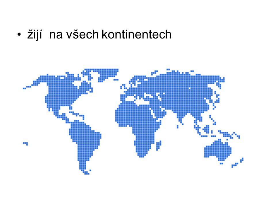 žijí na všech kontinentech
