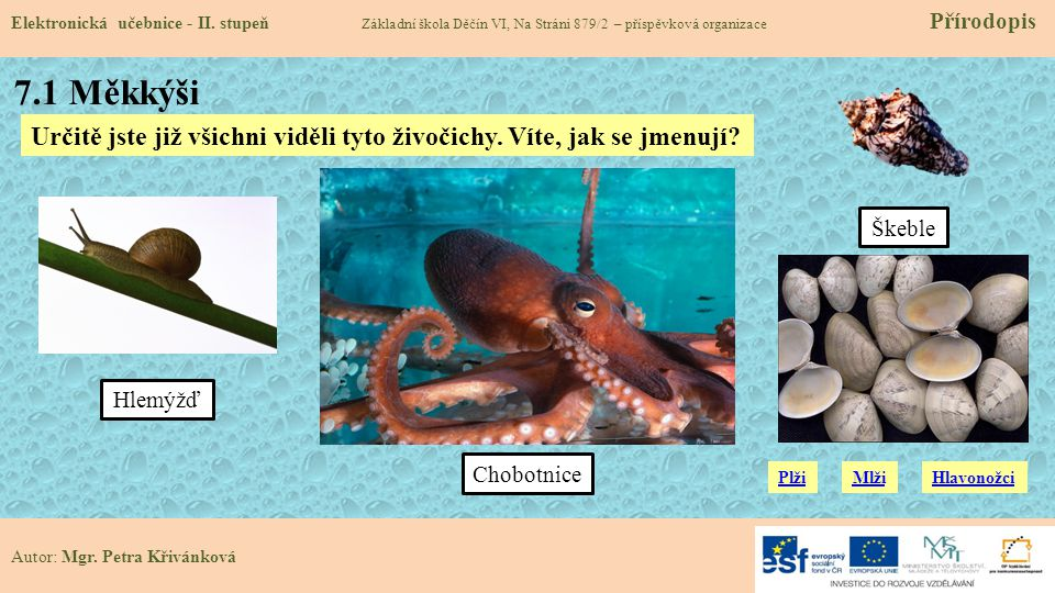 7.1 Měkkýši Elektronická učebnice - II.