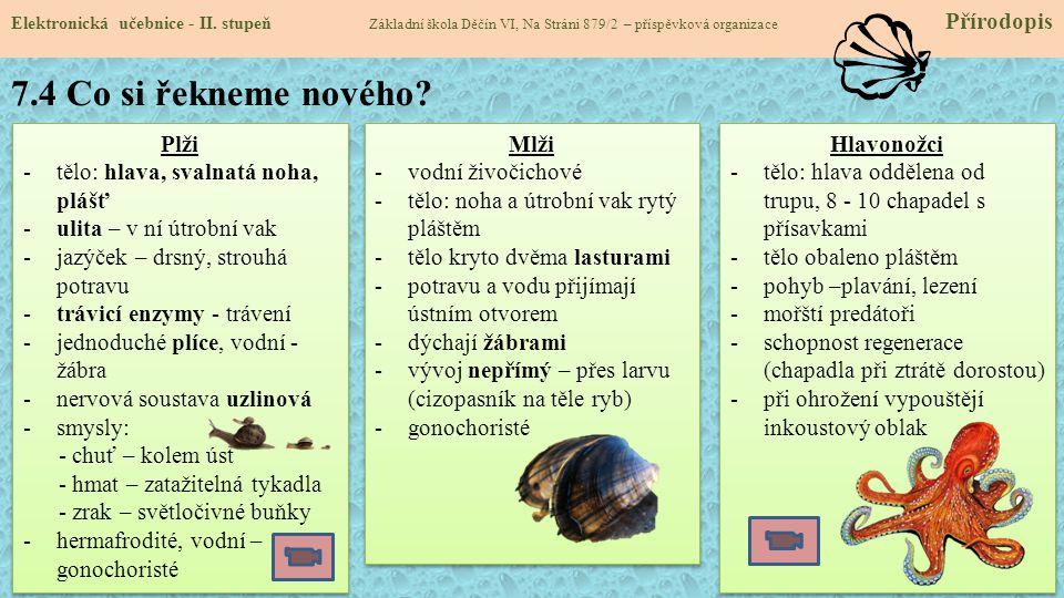 7.4 Co si řekneme nového.Elektronická učebnice - II.